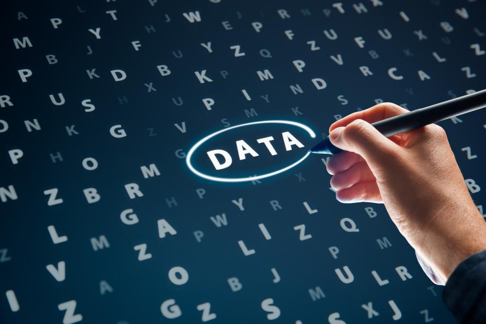 디하이브 데이터 분석가 신입 경력 채용
